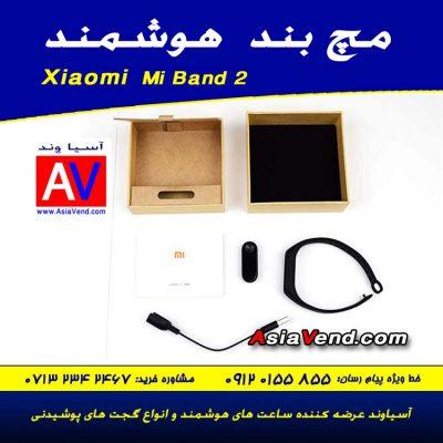 اقلام همراه و محتویات جعبه مچ بند هوشمند شیائومی Mi Band 2 400x400 مچ بند هوشمند شیائومی Xiaomi Mi Band 2 Wristband